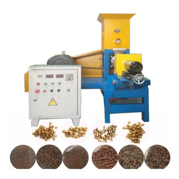 Stainless Steel Twin-Screw Extruder Pet Food Extruder