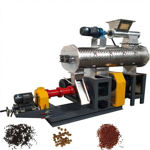 Automatic Cheap Dog Food Pet Food Dry Cat Food Manufacturing Machine