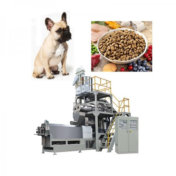Feed Pellet Machine South Africa Equipment