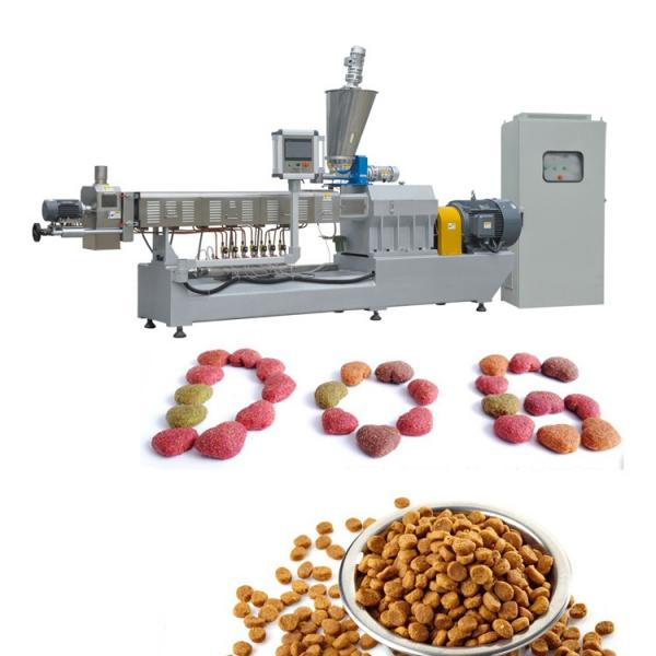 Twin-Screw Dry Food Machine Pet Dogs Feed Extruder Making Manufacturer
